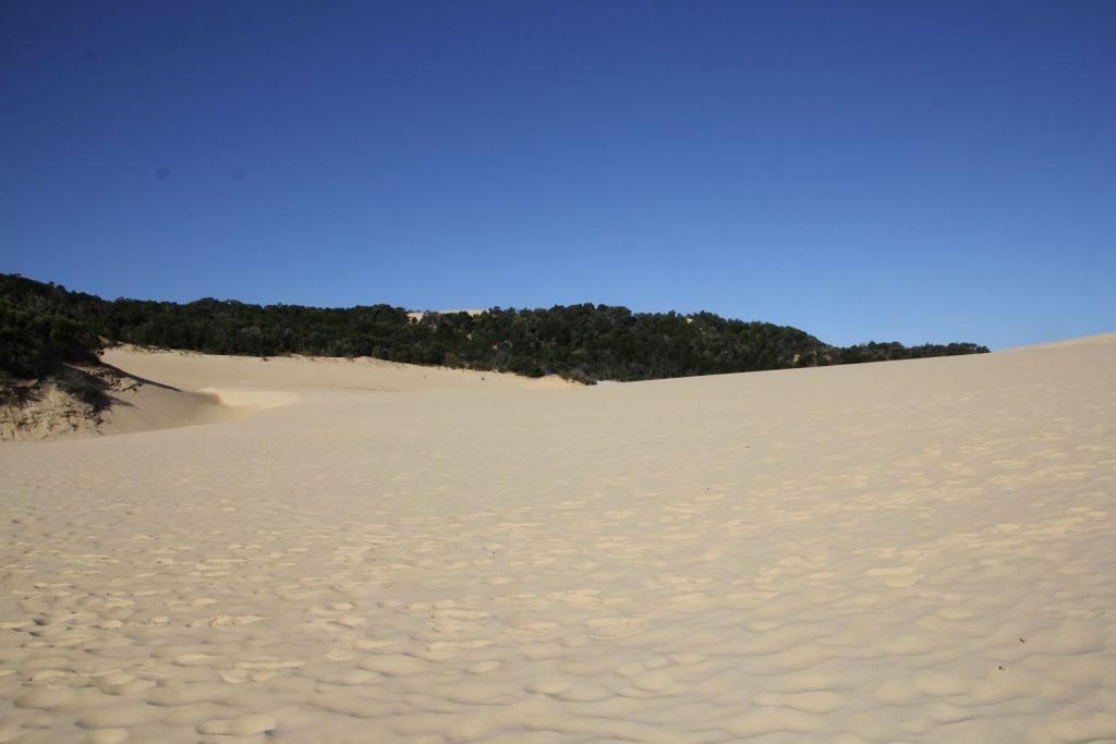 lake-wabby-sand